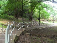 Damoe Ra Path
