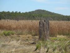 Mound Fields View