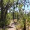 Florence Creek Trail - Litchfield NP