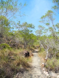 Tolmer Creek Trail View