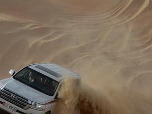Morning Safari With Dune Bashing Photos
