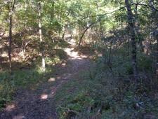 Dutchman's Trail 104 - Tonto National Forest - Arizona - USA