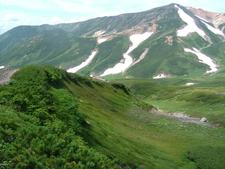 A Summer View From Mount Asahidake