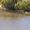 Dale Río