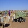 Camp Of Darfuris