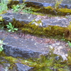 Dead Indian Soda Springs Steps