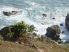 Grass Island Cliff