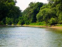 Danubio-Auen National Park