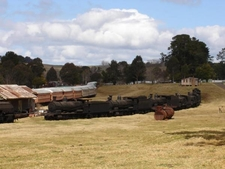 Dorrigo Steam Railway And Museum