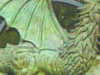 Dragon Transom