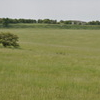 Durrington Walls Seen From Woodhenge
