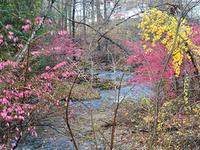 East Aspetuck River