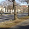 Near New York Avenue In Crown Heights