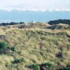 Eastern Ruahine Forest Park - North Island - New Zealand