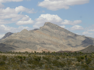 East Mormon Mountains