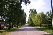Ecseri Main Street