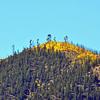 Elden Lookout Trail