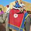 Elephant Ride Amer