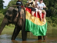 Sri Lanka In 08 Days
