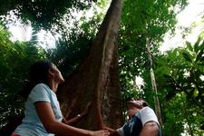 Endau Rompin National Park - Ecotourism