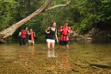 Endau Rompin National Park - Treks