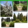 Parque Inglés y Jardín Botánico