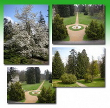 English Park And Botanical Garden-Lengyel