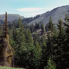 Entiat Mountains