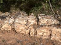Escalante Petrified Forest Campground