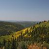 Escudilla National Recreationa Trail