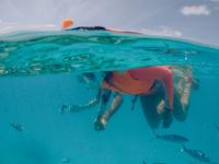 Maldives Snorkeling Adventure - Group Tour