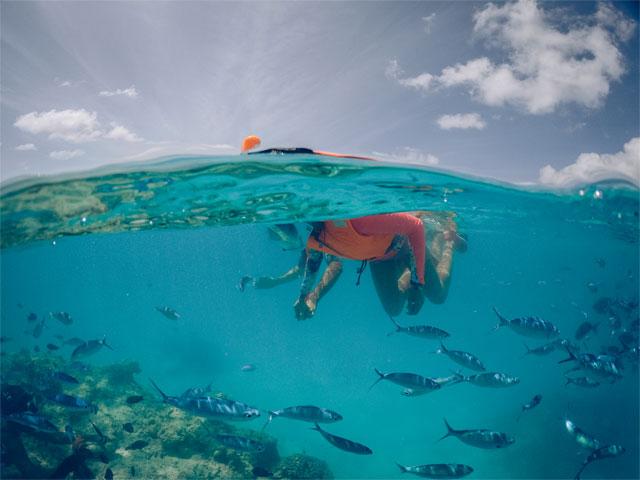 Maldives Snorkeling Adventure - Group Tour Photos