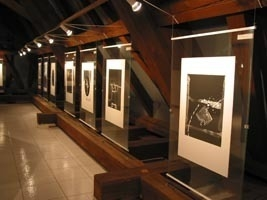 Exhibition Of The Painter György Kepes, Eger
