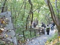 Exiliados Escaleras (Bujdosók Lépcsője)