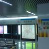 Lingzhao Xincun Station
