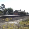 East Maitland Railway Station