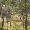 Mount Archer Parque Nacional
