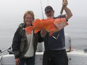 Fall Halibut Fishing Fotos