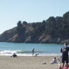 Family Fun At Muir Beach