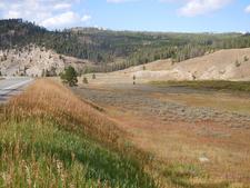Fan Creek Trail - Yellowstone - USA
