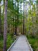 Fanny Bay Trail