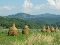 Feel the Balkans by GoBalkans