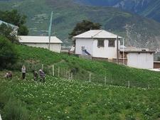 Feilaisi Backyard At Deqin Yunnan