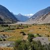 Fields Below Sayang - Nepal Annapurna