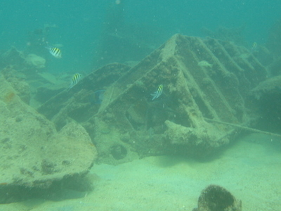 Fifi Shipwreck
