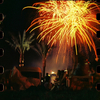Firework At Fountain