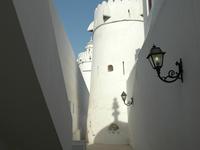 Palacio Al-Hosn (Fuerte Blanco)