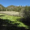Fish Creek Trail 1W07