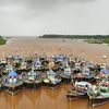 Fishing Boats @ Anjarle Creek - Ratnagiri MH