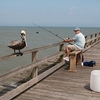 Fishing Over Kure Beach Fishing Pier NC